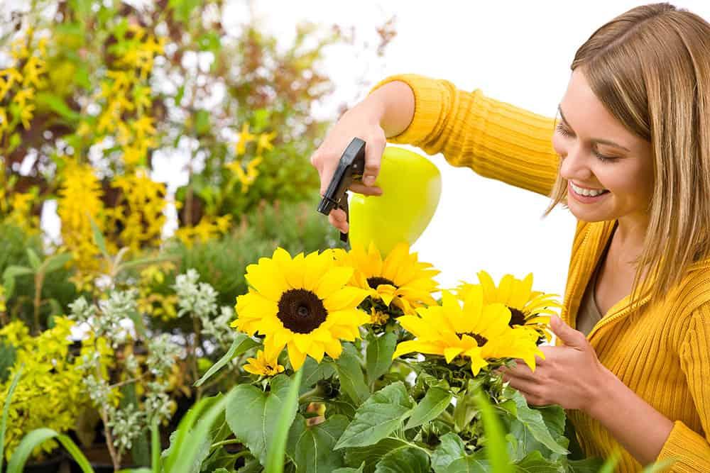 Kukkienhoito-ohjeita